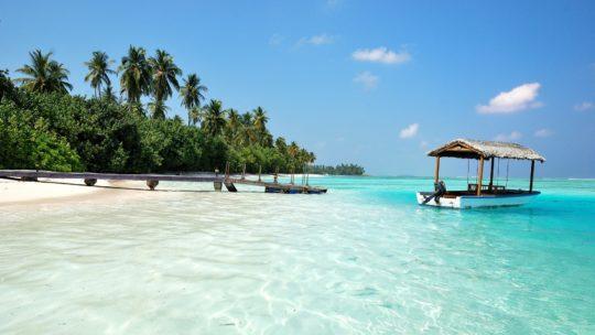 Maldivu salas